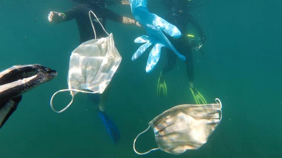 Dia Mundial do Ambiente: mares...