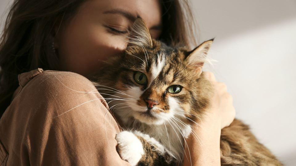 Mulher com gato ao colo