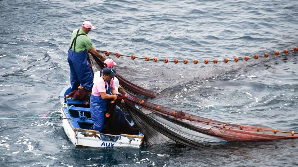 Em Esposende, os pescadores vã...