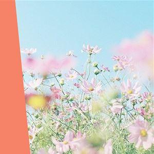 Ana Gomes Living - top 5 cuidados de beleza na mudança da estação