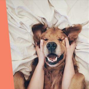 Ana Gomes Living: 5 formas de melhorar o teu humor