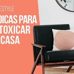Ana Gomes Living: 5 dicas para desintoxicar a tua casa